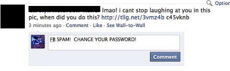 facebook worm